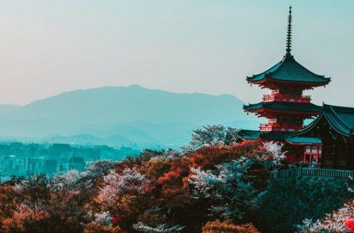 Gli alberi secondo la dottrina shintoista