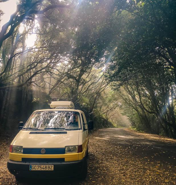 Minivan giallo e bianco nella foresta del Parco di Anaga l'anima verde di Tenerife